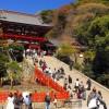 鶴岡八幡宮近くで料金が安い駐車場!無料や予約できる駐車場も紹介